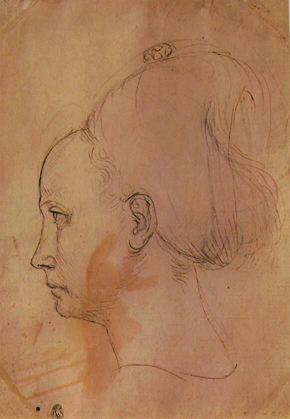 ピサネッロ女性頭部